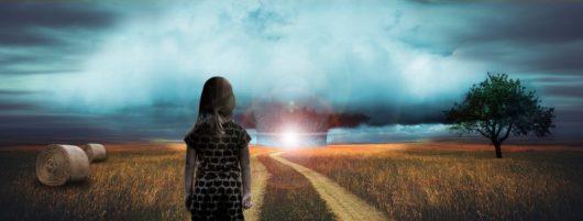 Petite fille seule dans un champs