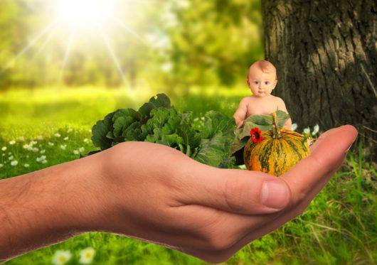 bébé main légumes