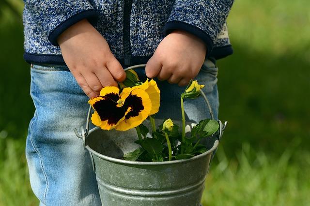 enfant fleurs seau