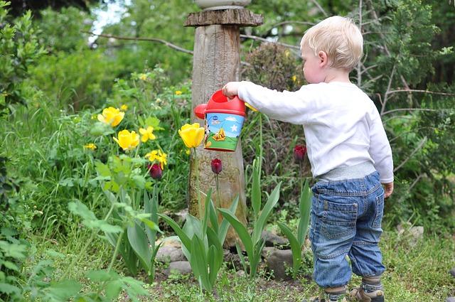 enfant qui arrose des fleurs