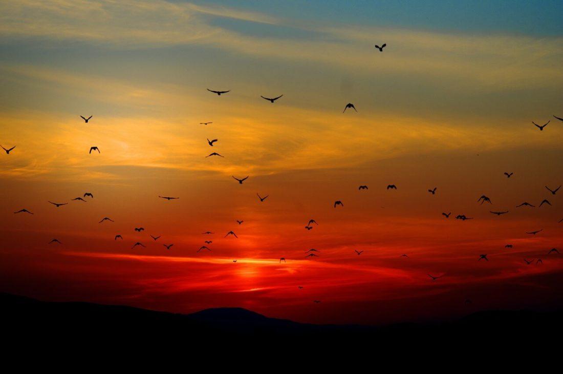 coucher de soleil nuages oi
