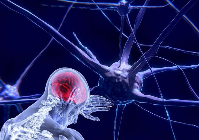 neurocsience gratitude