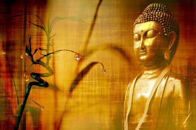 Boudha meditation analogie